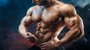Evaluate: The Very Best On-line SARMs Retailer for You